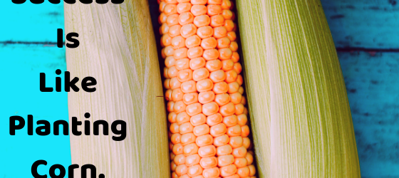 Success Is Like Planting Corn